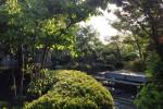 緑の保寧寺